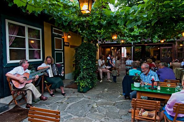 Winemaking「City Hall Vienna」:写真・画像(6)[壁紙.com]