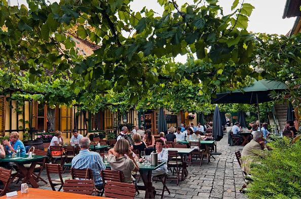 Vintner「Typical Viennese Wine Tavern」:写真・画像(3)[壁紙.com]