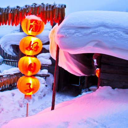 Chinese Lantern「Heilongjiang,China」:スマホ壁紙(16)