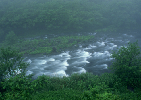 Nikko City「River」:スマホ壁紙(5)