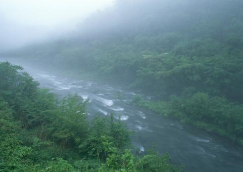 Nikko City「River」:スマホ壁紙(15)