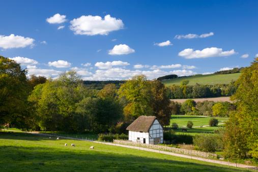 Rolling Landscape「Rural scene near Chichester, England」:スマホ壁紙(1)