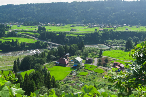 里山「Rural Scene in Niigata Prefecture, Japan」:スマホ壁紙(13)