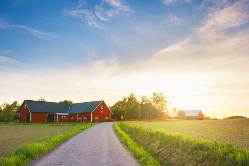 Agricultural Field「Rural scene in Sweden」:スマホ壁紙(4)
