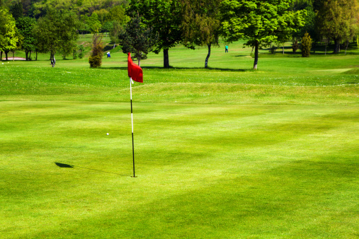 Sports Flag「Golf field」:スマホ壁紙(1)