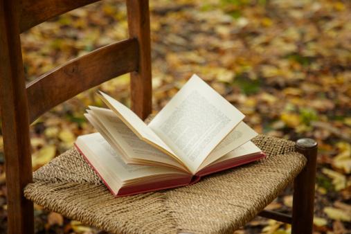 イギリス「Open book on chair in forest」:スマホ壁紙(19)