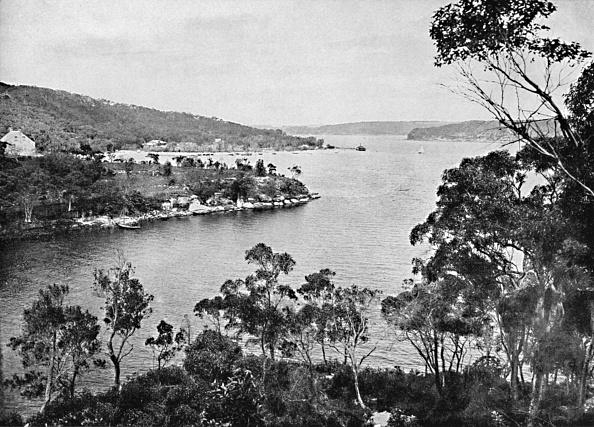 Water's Edge「Middle Harbour」:写真・画像(16)[壁紙.com]