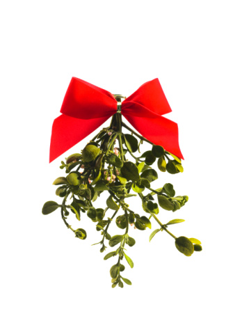 Mistletoe「Mistletoe on white background」:スマホ壁紙(11)