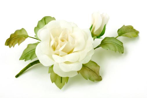 Silk「Rose on white background」:スマホ壁紙(5)