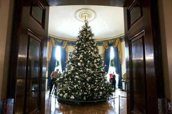 Christmas Decoration「Laura Bush Presents White House Holiday Decorations」:写真・画像(17)[壁紙.com]