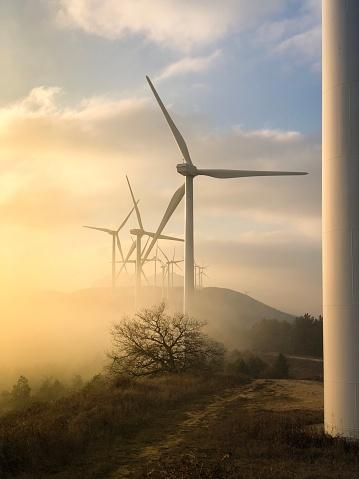 Power Supply「Wind farm at sunset.」:スマホ壁紙(12)