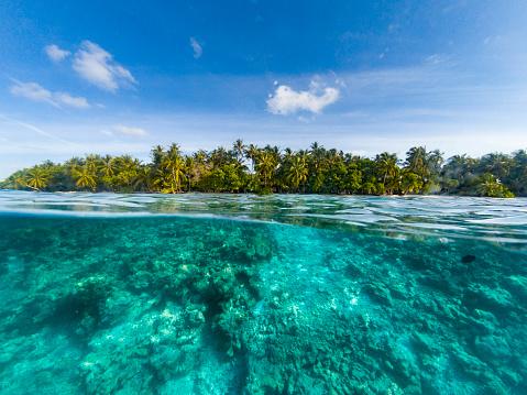 Lagoon「Paradisiac beach at Maldives」:スマホ壁紙(12)