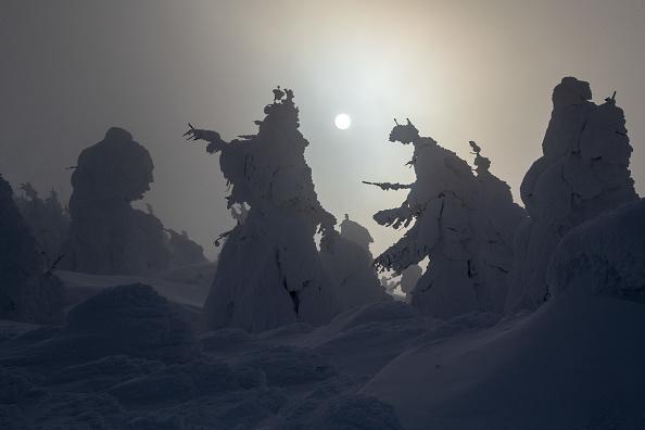 ヒューマンインタレスト「The Snow Monsters Of Mount Zao」:写真・画像(14)[壁紙.com]