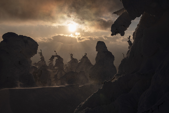 ヒューマンインタレスト「The Snow Monsters Of Mount Zao」:写真・画像(15)[壁紙.com]