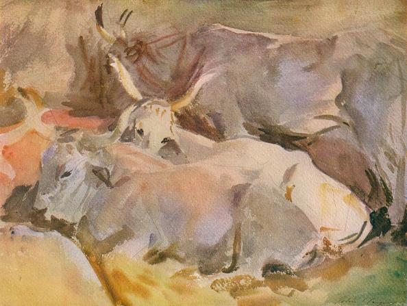 Horned「Oxen At Siena」:写真・画像(3)[壁紙.com]