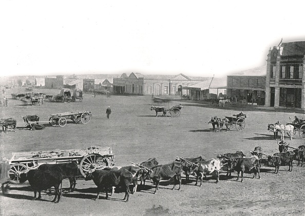 Ox Cart「The Market Square」:写真・画像(5)[壁紙.com]