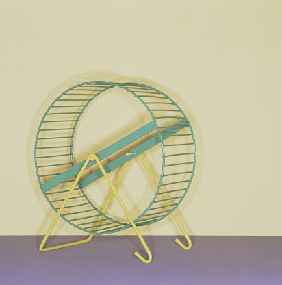 Rodent「Hamster wheel」:スマホ壁紙(4)