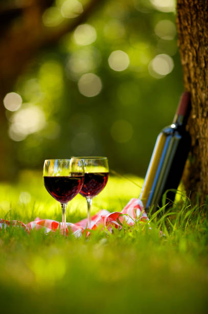 Two Glasses of Red Wine at Picnic:スマホ壁紙(壁紙.com)