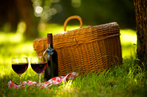 Picnic「Two Glasses of Red Wine at Picnic」:スマホ壁紙(3)