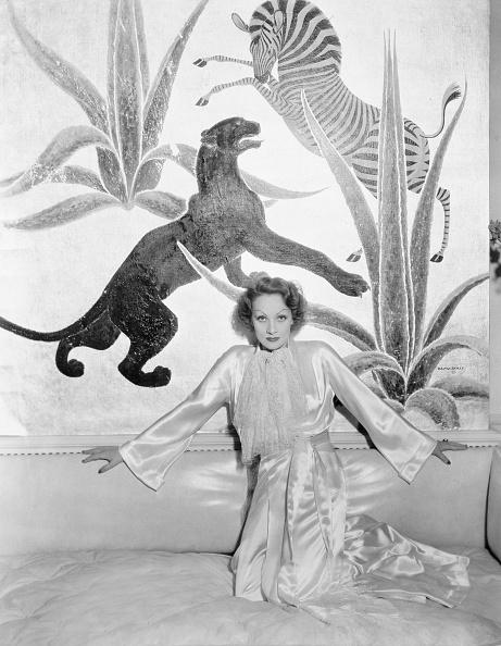 Marlene Dietrich「Marlene Dietrich」:写真・画像(19)[壁紙.com]