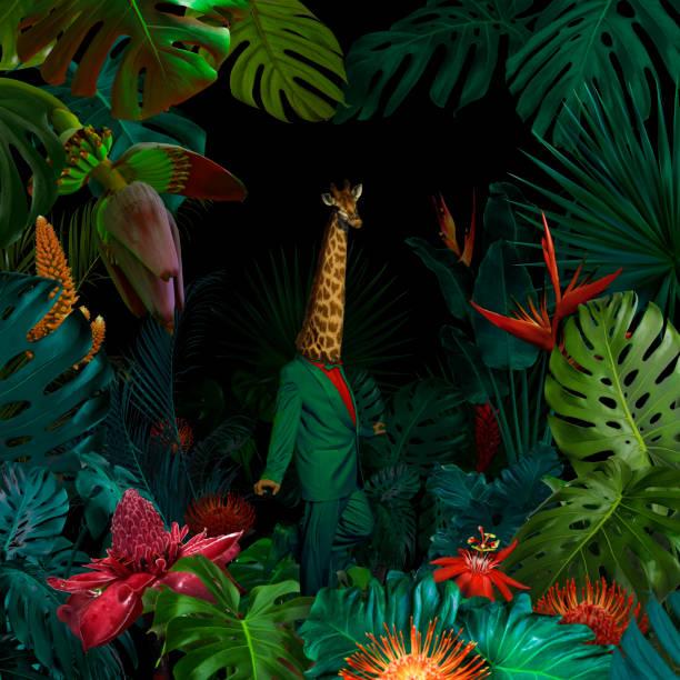Surreal jungle portrait:スマホ壁紙(壁紙.com)