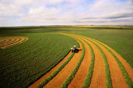 Crop - Plant「Harvesting alfalfa crop, aerial view」:スマホ壁紙(2)