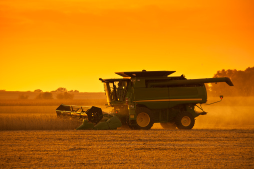 newoutdoors「Harvesting Soybeans at Sunset.」:スマホ壁紙(12)
