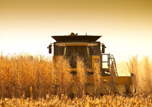 newoutdoors「Harvesting Corn in Nebraska.」:スマホ壁紙(11)
