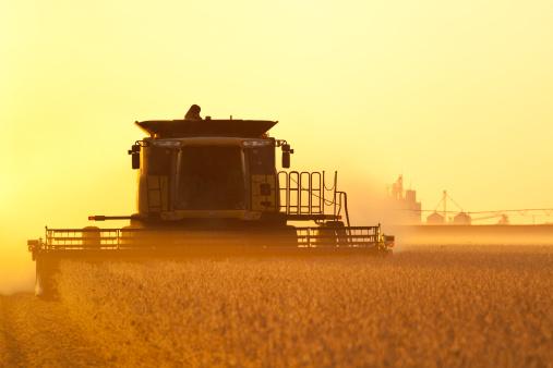 newoutdoors「Harvesting Soybeans, Modern Combine.」:スマホ壁紙(5)