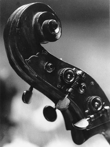 Bass Instrument「Double Bass Scroll」:スマホ壁紙(0)