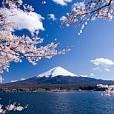 富士山壁紙の画像(壁紙.com)