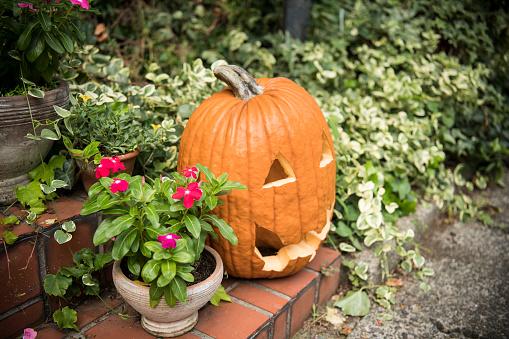 ハロウィン「ハロウィーンの日に装飾品が飾られています。」:スマホ壁紙(14)