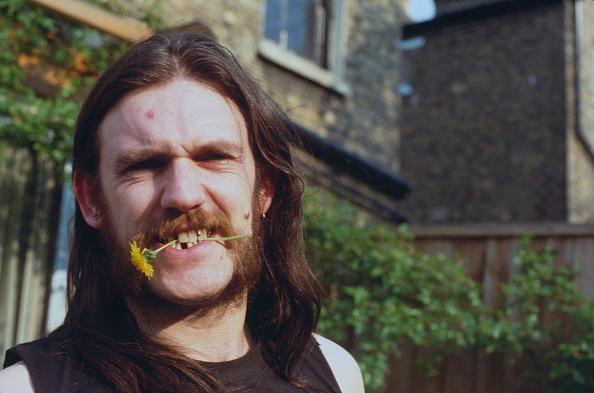 たんぽぽ「Lemmy Of Motorhead」:写真・画像(10)[壁紙.com]