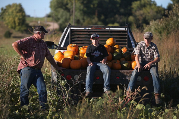 Farm「Uninsured Family Of Farmers Plans To Opt Out Of Affordable Health Care Act」:写真・画像(15)[壁紙.com]