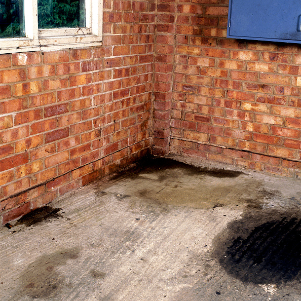 Brick Wall「Brick wall and concrete floor in need of repair Signs of rising damp on the lower section of the brickwall」:写真・画像(4)[壁紙.com]