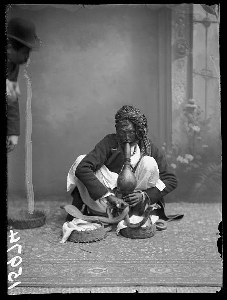 Indian Subcontinent Ethnicity「Indian Snake Charmer」:写真・画像(2)[壁紙.com]