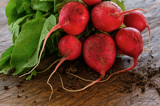 Earth「Bunch of red radishes on table」:スマホ壁紙(16)