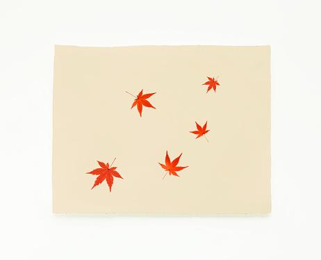 Japanese Maple「Japanese rice paper with Japanese maple leaves」:スマホ壁紙(16)