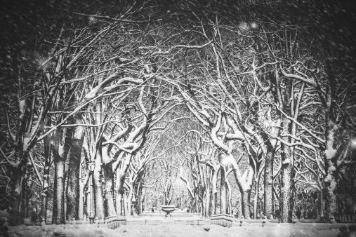 Snowdrift「Snow Blizzard New York」:スマホ壁紙(1)