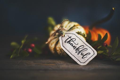Thanksgiving「Giving thanks with pumpkin assortment still life and thankful message」:スマホ壁紙(5)