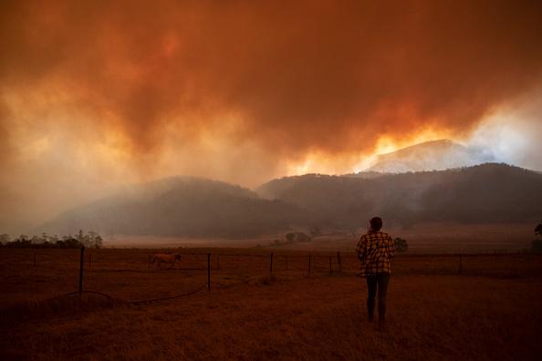 オーストラリア「State Of Emergency Declared In ACT As Canberra Braces For Increased Bushfire Threat」:写真・画像(13)[壁紙.com]