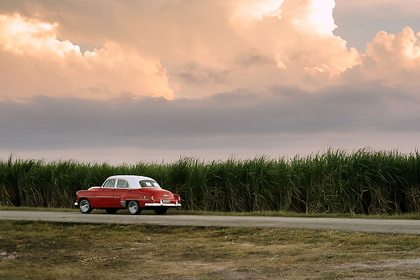 Sugar Cane「Sugar Cane Workers Labor In Rural Cuba」:写真・画像(19)[壁紙.com]