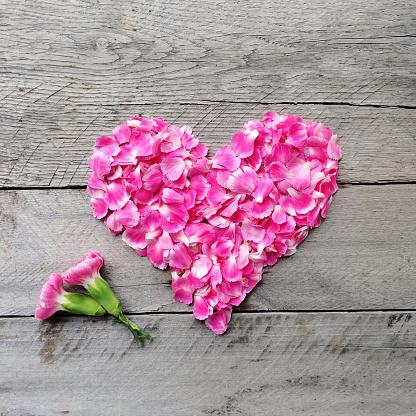 カーネーション「Pink floral heart made from carnation flowers」:スマホ壁紙(7)