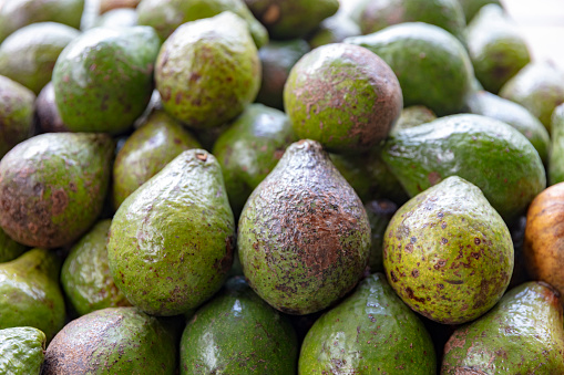 Grenadines「Avocados on local produce market in Bequia, St Vincent and the Grenadines, 2019」:スマホ壁紙(9)