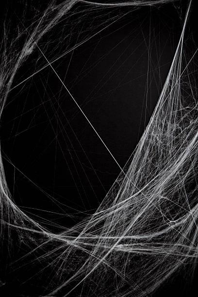 フル cobwebs の背景:スマホ壁紙(壁紙.com)