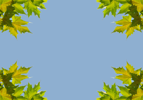 Airplane「Background with plane leaves」:スマホ壁紙(9)