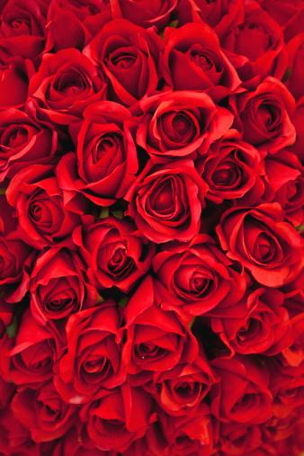 バレンタイン「赤いバラの背景」:スマホ壁紙(15)