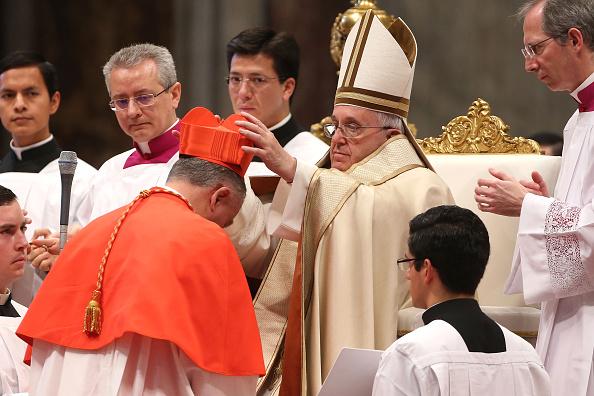 St「Pope Francis Appoints Twenty New Cardinals」:写真・画像(18)[壁紙.com]