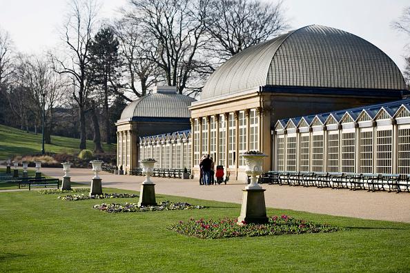 Greenhouse「Sheffield Botanical Gardens and Glasshouses, Sheffield, South Yorkshire, UK」:写真・画像(5)[壁紙.com]