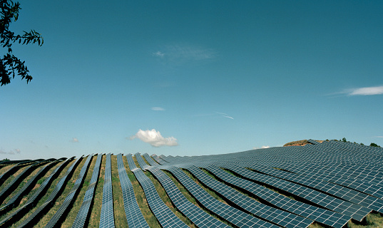 Solar Panel「Field with solar panels」:スマホ壁紙(19)